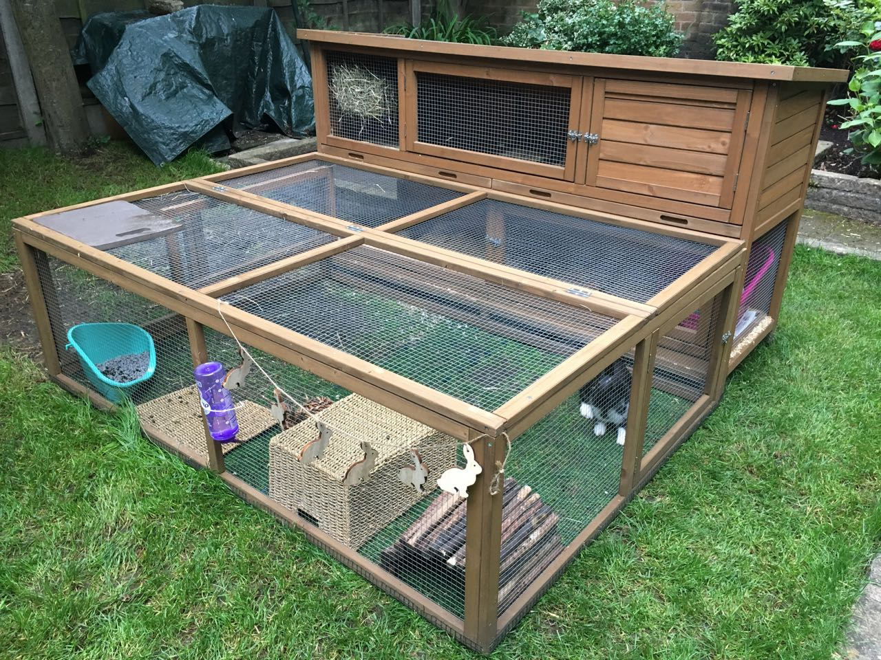Large Coach House Rabbit Hutch (in-depth user review)