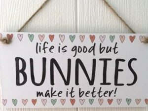 Life is good but bunnies make it better sign